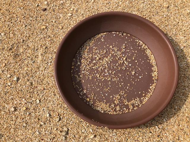 星の砂を見つけるために持っていったほうがいい道具